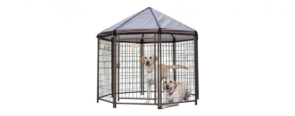 advantek dog kennel
