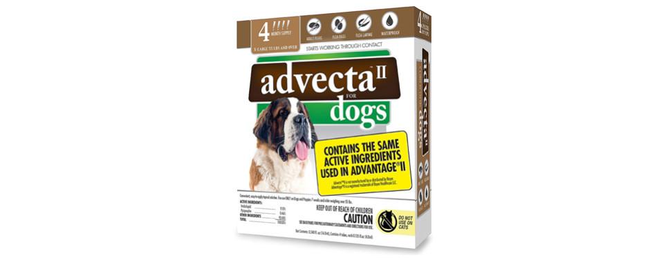 advecta flea treatment