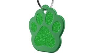 affordable dog id tag