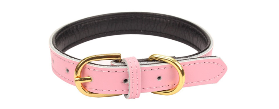 aolove leather collar