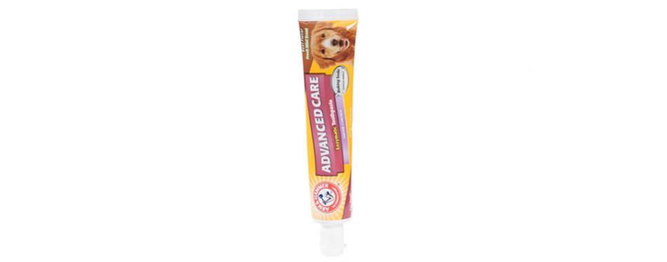 arm & hammer enzymatic dog toothpaste