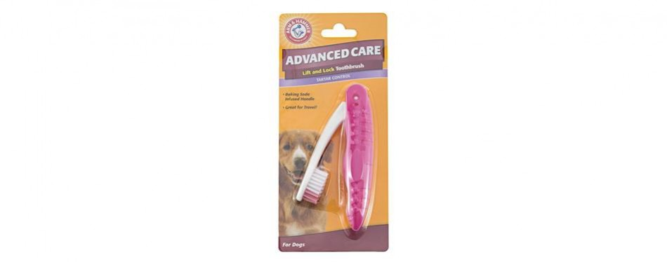 arm & hammer dog toothbrush