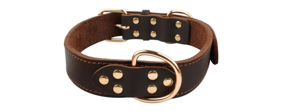 berry pet collar