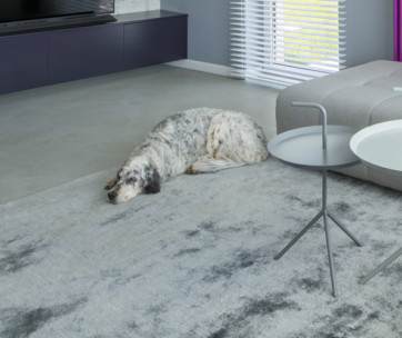 best are rug for dogs
