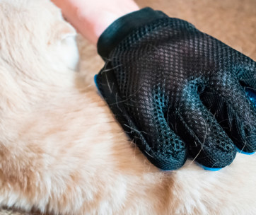 best cat grooming gloves