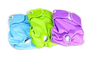 best choice dog diapers
