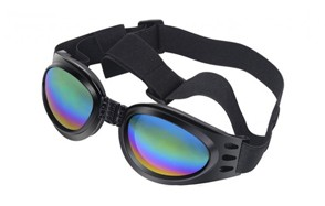 best choice dog sunglasses