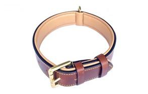 best choice leather collar