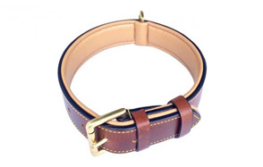 best choice leather collar