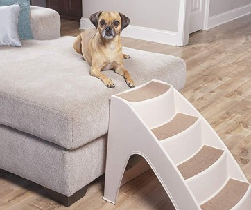 best dog stairs and steps