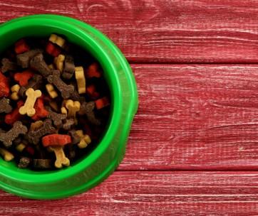 best high fiber dog food