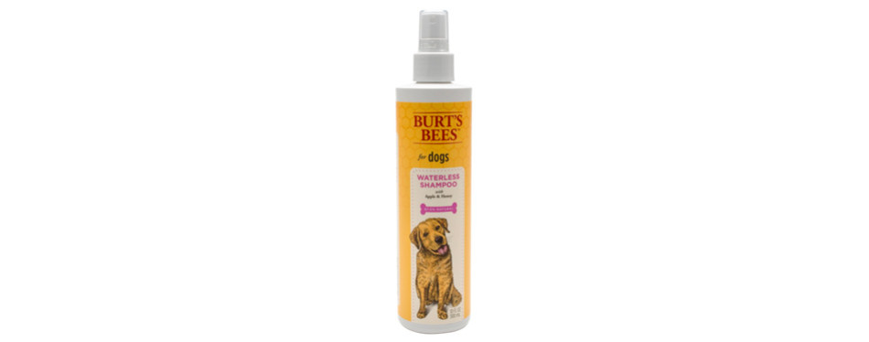 burt's bees all-natural dry shampoo for dogs