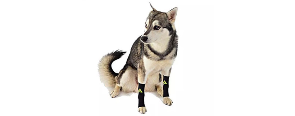 canine dogs compression dog leg brace