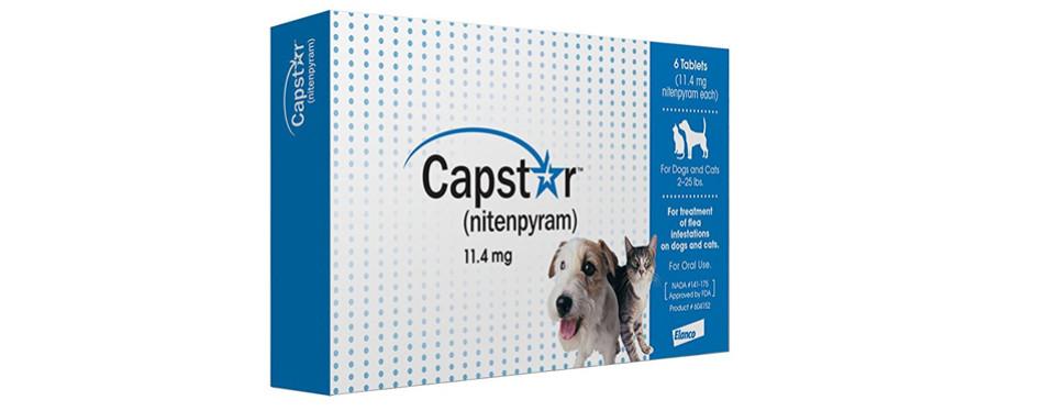capstar dog tablets