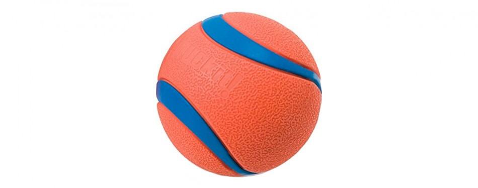 chuckit ultra dog ball