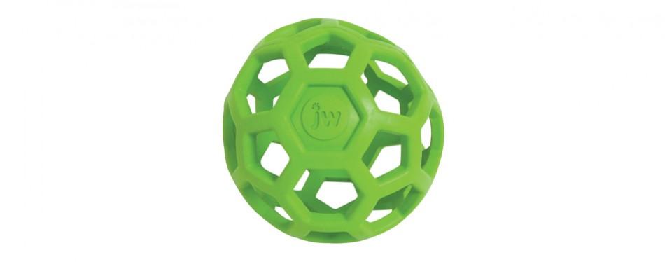 dispensing dog ball