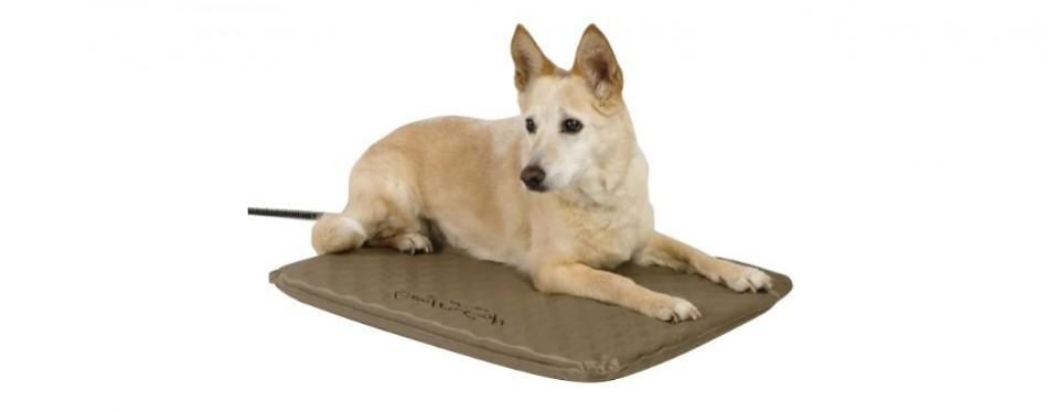 dog house heater