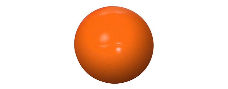 doggie dooley virtually indestructible herding ball for dogs