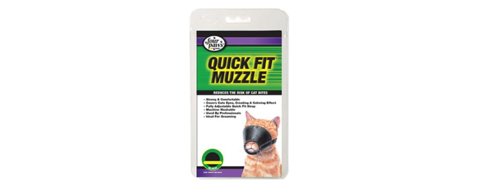 four paws cat muzzle