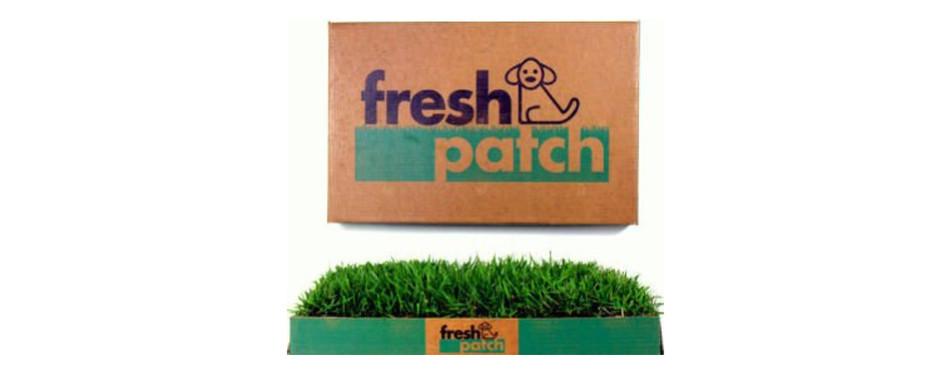 fresh patch indoor dog potty