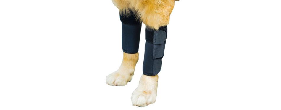 gniks front dog leg brace
