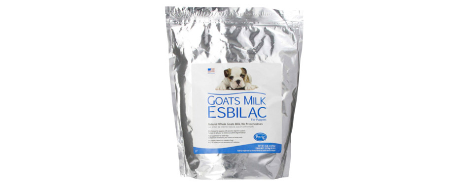 goat's milk esbilac puppy milk replacer