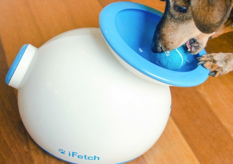 iFetch Interactive Ball Launchers for Dogs3