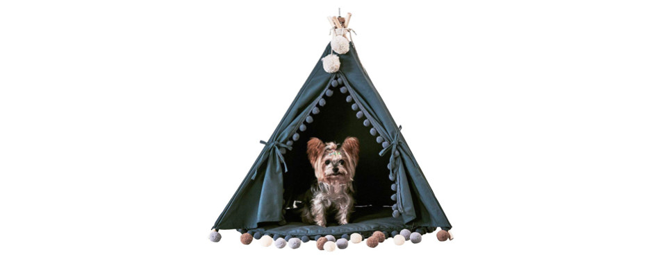 indian teepee dog bed