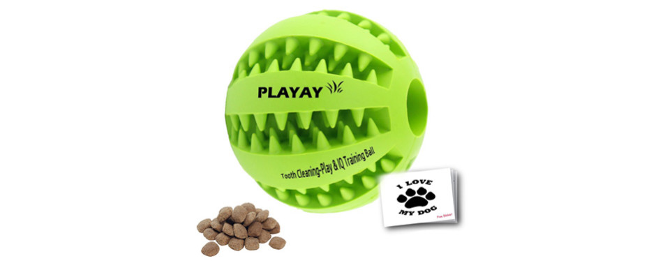iq treat ball chew toy