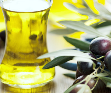 is olive oil good for dogs