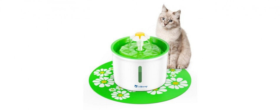 isyoung cat water fountain