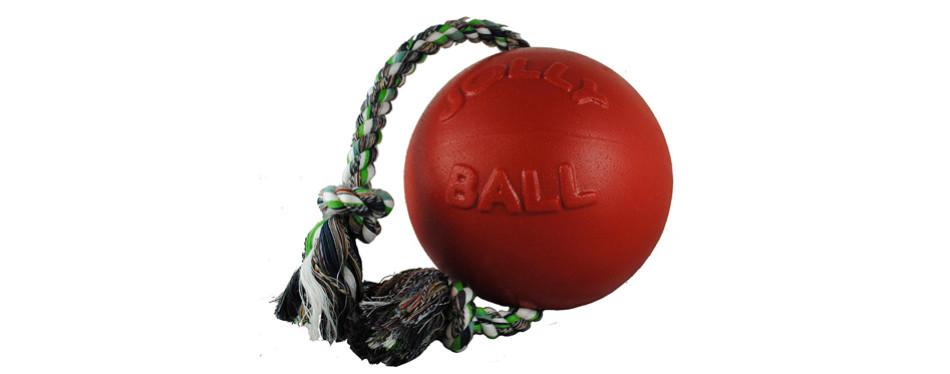 jolly pets romp-n-roll ball