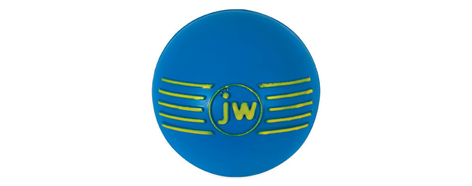 jw pet company isqueak ball rubber dog toy