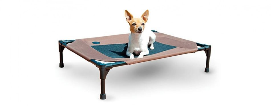 k&h pet products original pet cot elevated dog bed