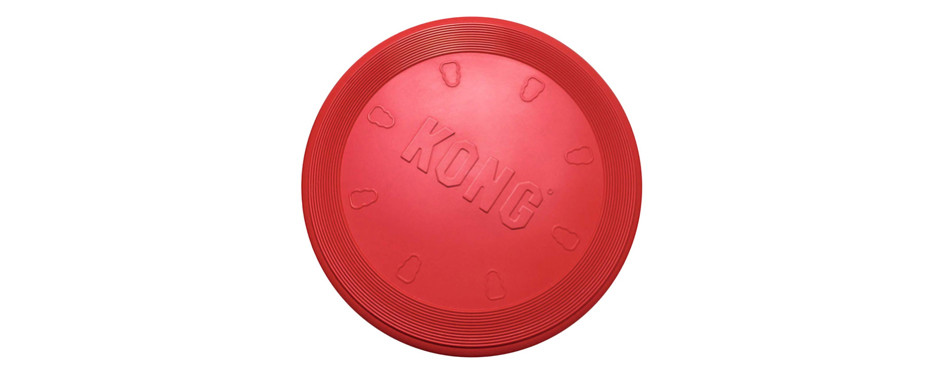kong frisbee