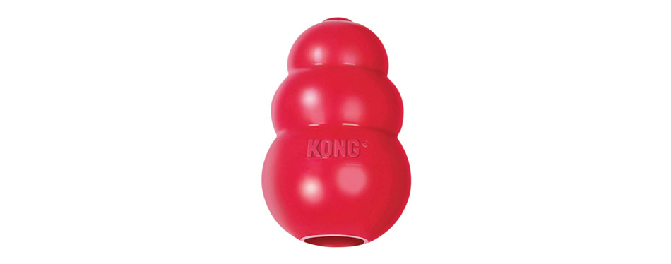 kong rubber dog toy