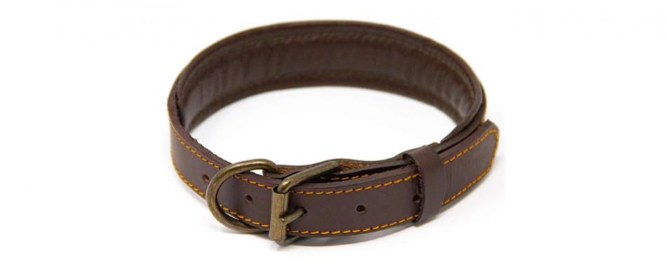 logical leather collar