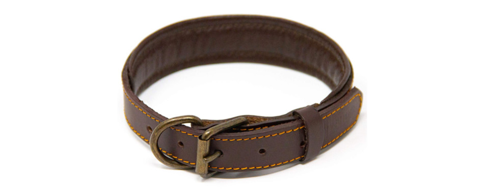 logical leather collar