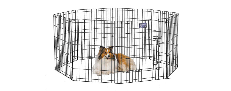 midwest exercise dog playpen
