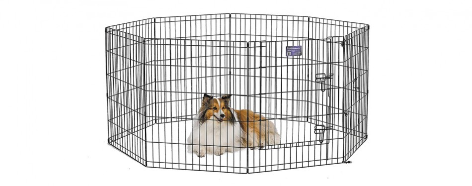 midwest playpen for dogs