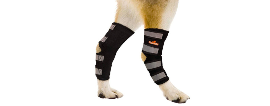 neoally dog knee brace