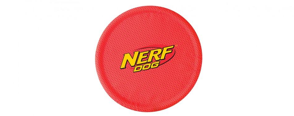 nerf dog frisbee