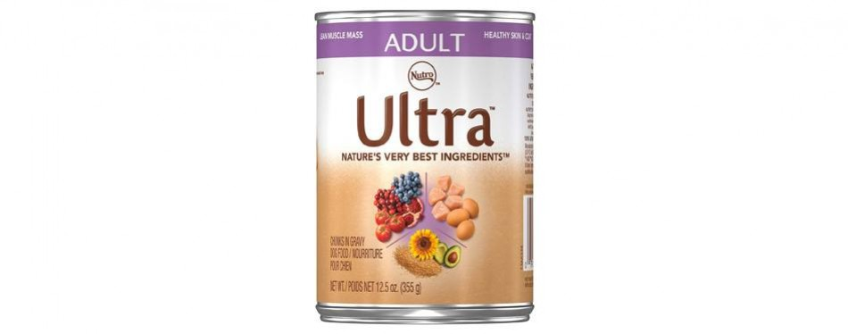 nutro ultra adult wet dog food