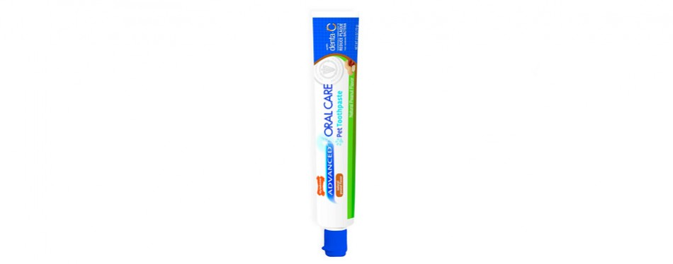 nylabone advanced oral care dog toothpaste