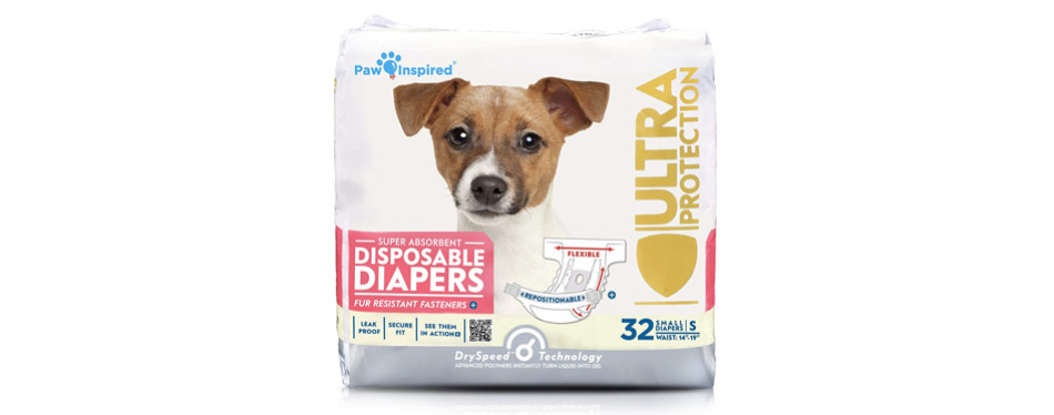 paw inspired dog diapers