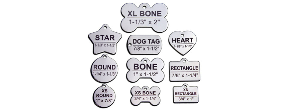 pawsitively pet tags
