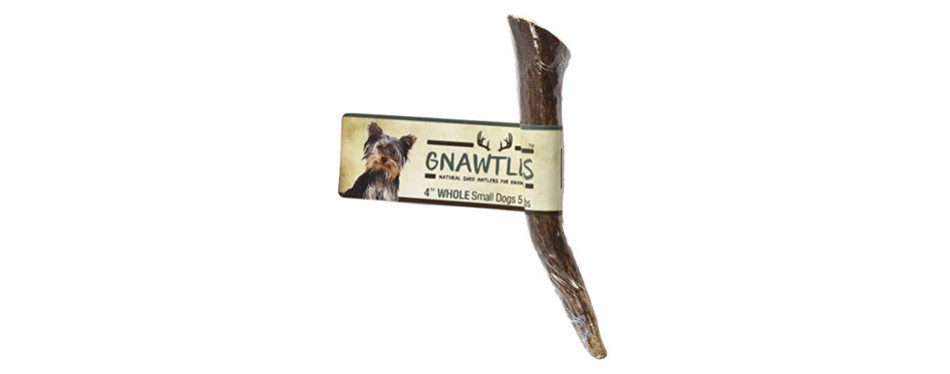 pet parents gnawtlers premium elk antlers dog chews