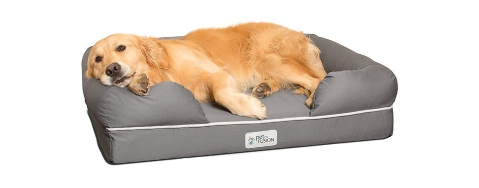 petfusion large dog bed memory foam