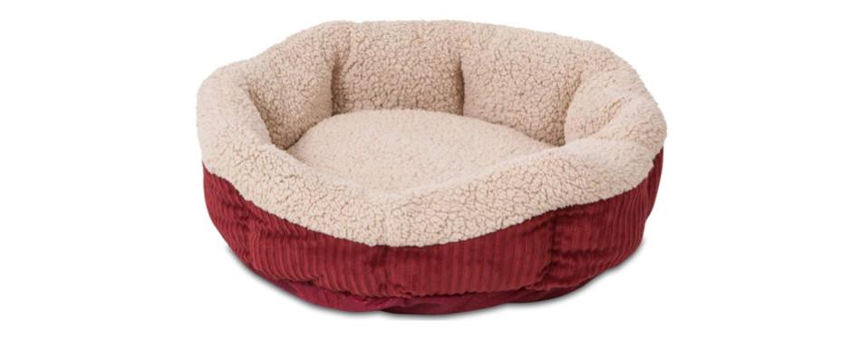 petmate cat bed