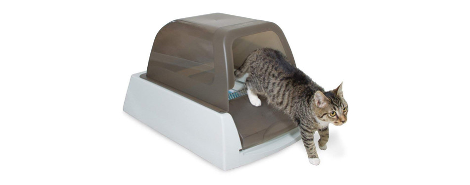 petsafe cat litter box